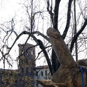 cazzarmato – all'isola tiberina